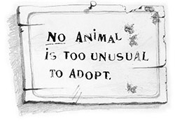 No Animal is too unusual to adopt.